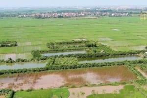 Thủ tục giao đất cho thuê đất nông nghiệp
