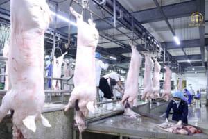Điều kiện kinh doanh giết mổ gia súc gia cầm